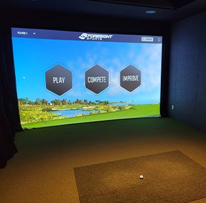 Golf Simulator Screen